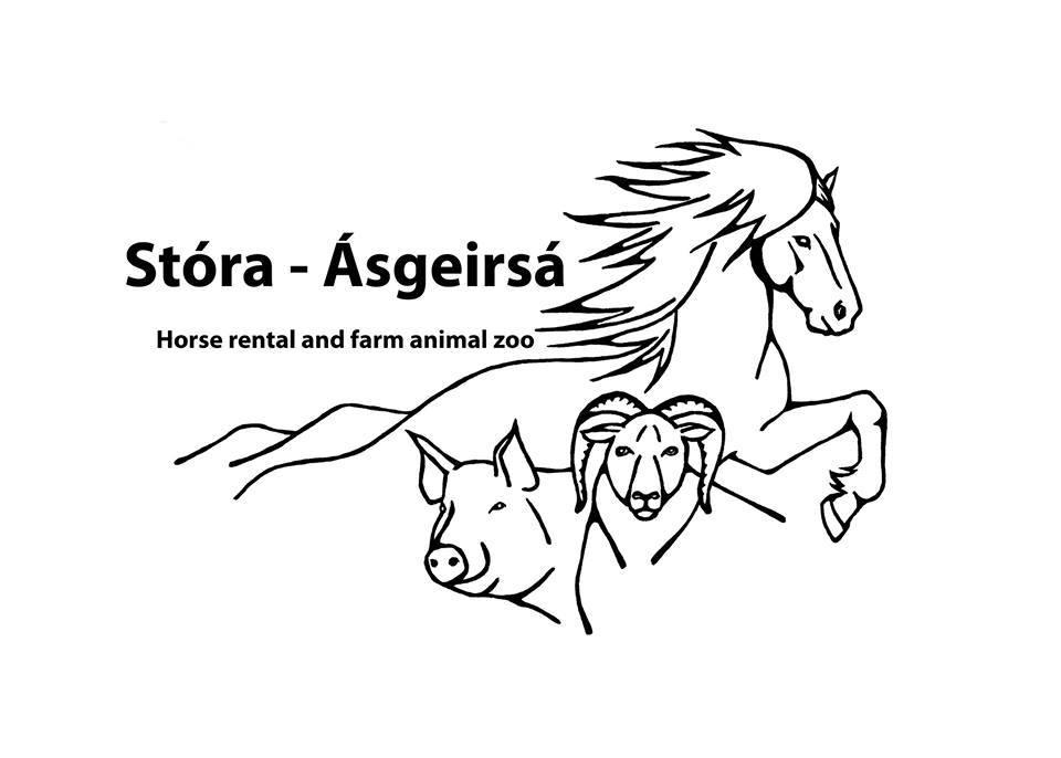 Stóra-Ásgeirsá, Húsdýragarður og hestaleiga